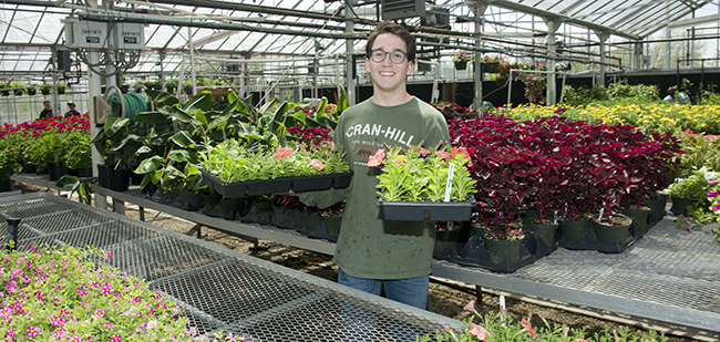 Student prepares plants for sale in the greenhouse